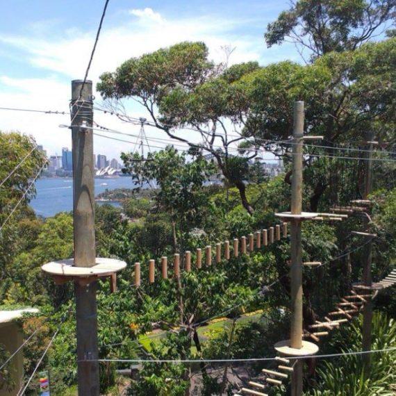 Adventure park:  Wild Ropes park (Australia)