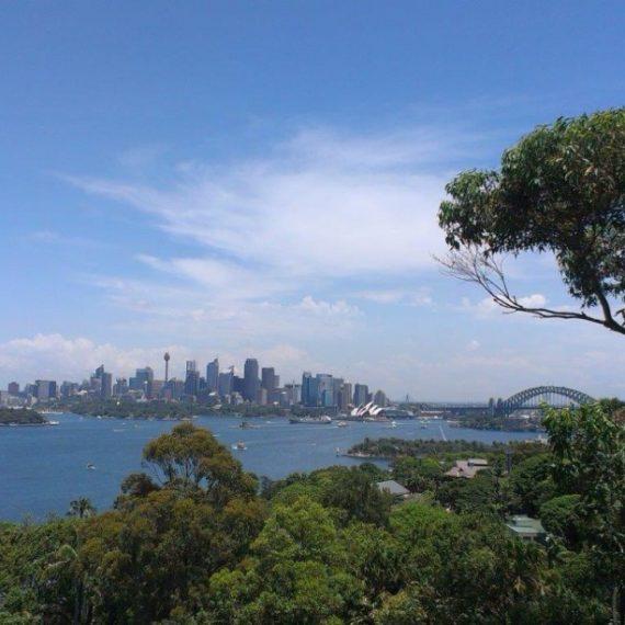 parc aventure australie3
