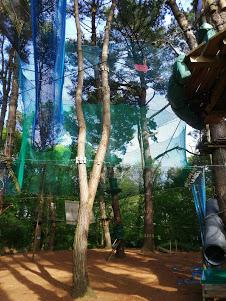 trampôforest rennes